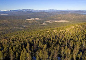 991 HASKILL MOUNTAIN ROAD, Kila, Montana 59920, ,Land,For Sale,HASKILL MOUNTAIN ROAD,1015