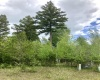1006 St Andrews Drive, Columbia Falls, Montana 59912, ,Land,For Sale,St Andrews Drive,1033